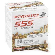 ** IN STOCK NOW ** Winchester 555 Pack .22LR - 36 Grain - Copper Plated Hollow Point - 555 Round Pack ** IN STOCK NOW **